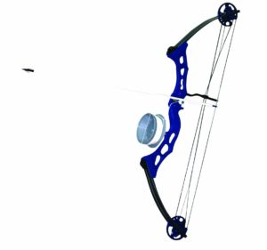 Arrow Precision Frenzy Bowfishing